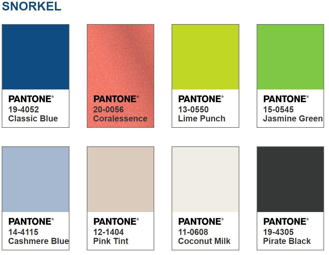 Snorkel Colors